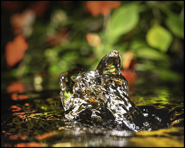Pond Bubbler