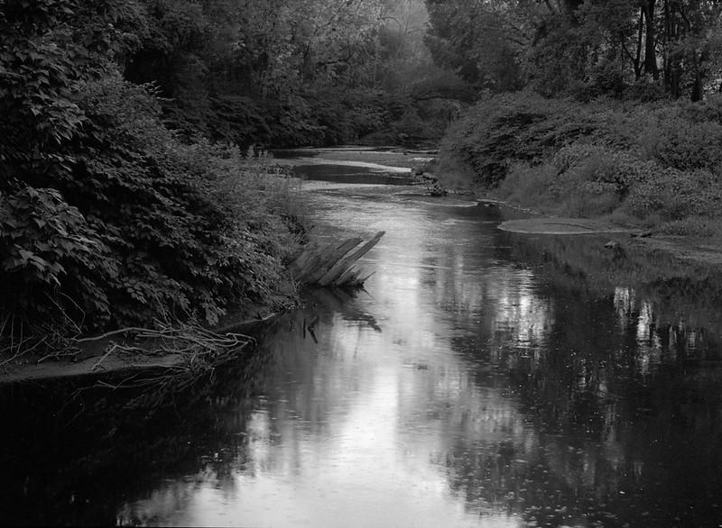 Creek, Dusk