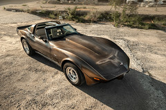 1979 Corvette C3 Survivor - Shot 6