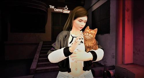 feline love ♥