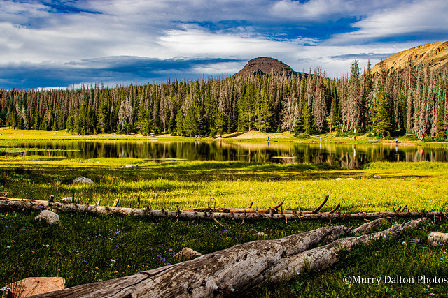 Trial Lake IMG_2164