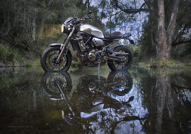 creek mirrored_1