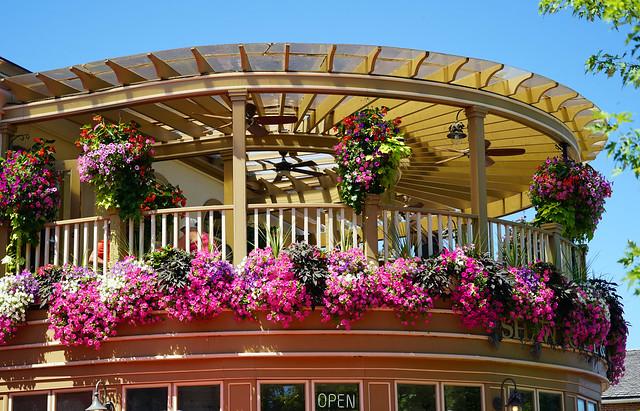Restaurant Flowers in Niagara-on-the-Lake, Canada