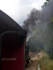 Rauchender Nichtraucher - at Mägdesprung on the Selketalbahn in the Harz