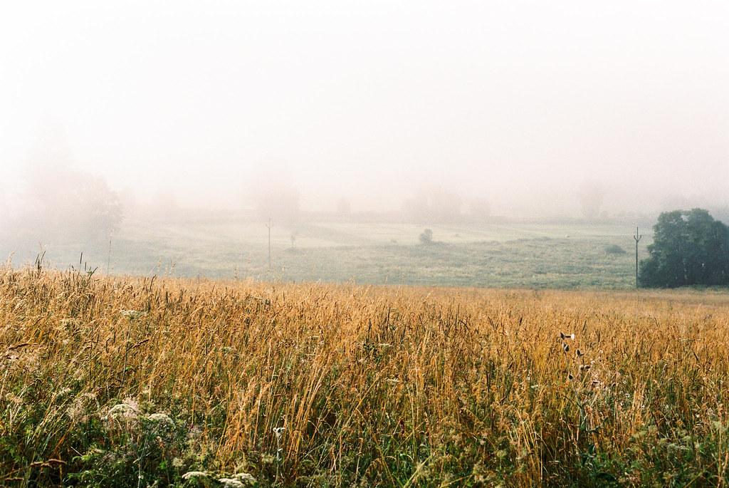 Obscure landscape