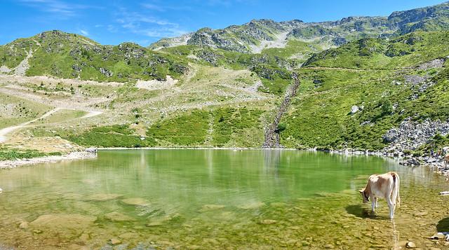 Lac de la Jasse