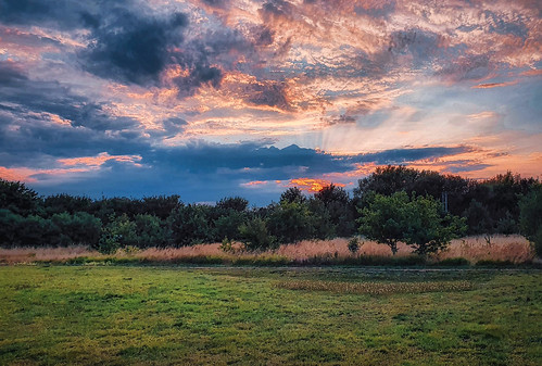 charvil twyford berskshire britain thamesvalley meadow field pitch playground common dogwalk grass trees sky clouds sunset colours rays skyscape phone mobile samsung galaxy s10 android edit process postprocess lightroom photoshop topaz nik skylum luminar