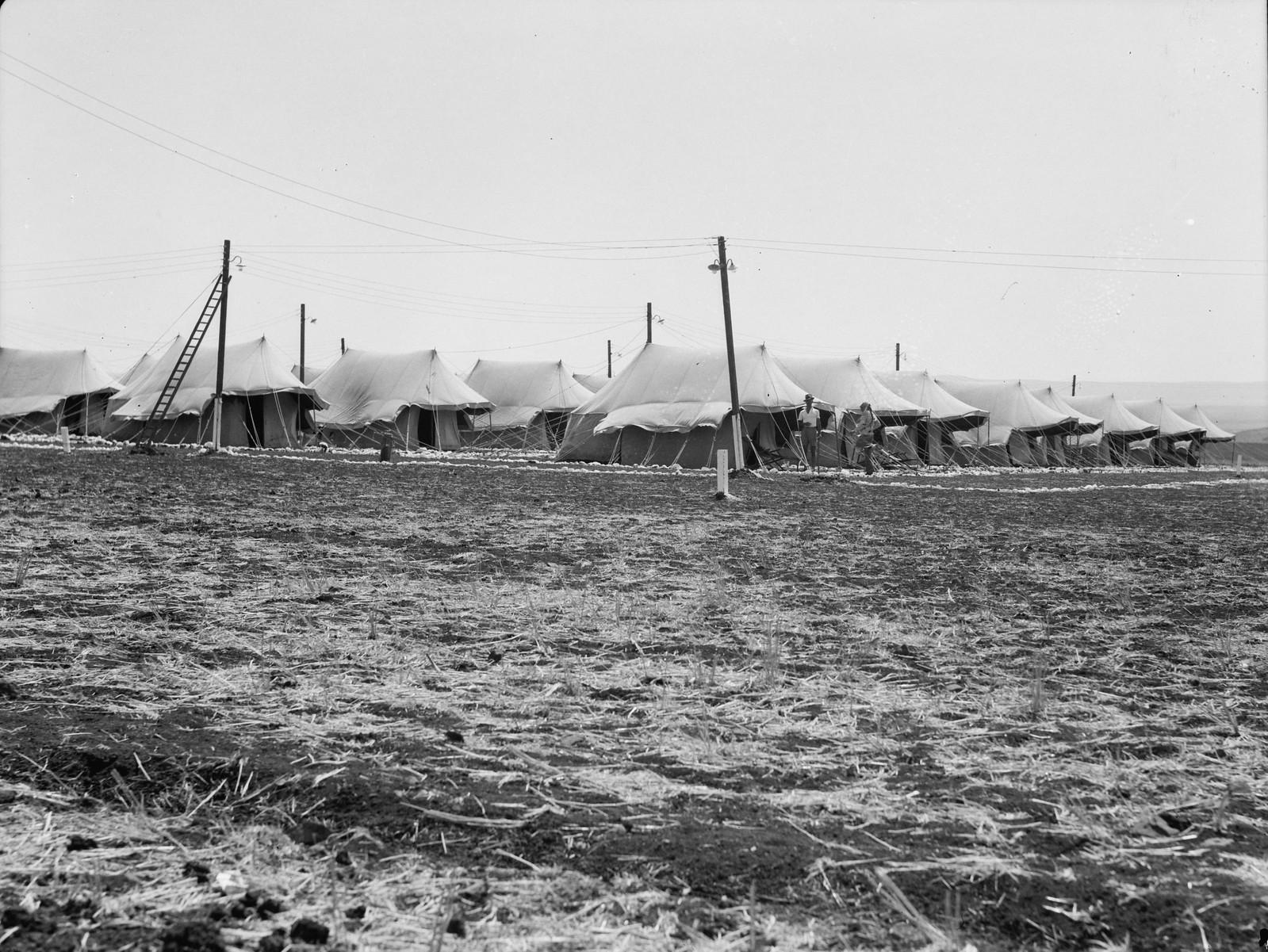 04. Лагерь IPC (Иракская нефтяная компания). Более близкий вид