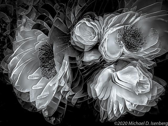 SILK FLOWER 5
