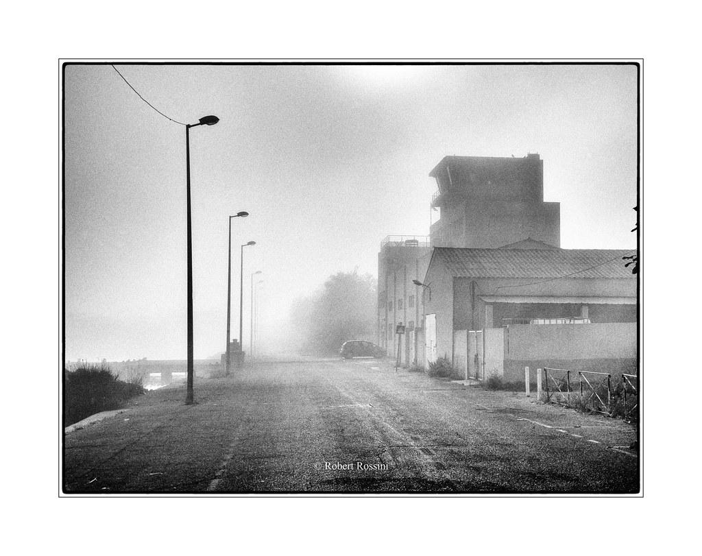 société Maritima, sous la brume