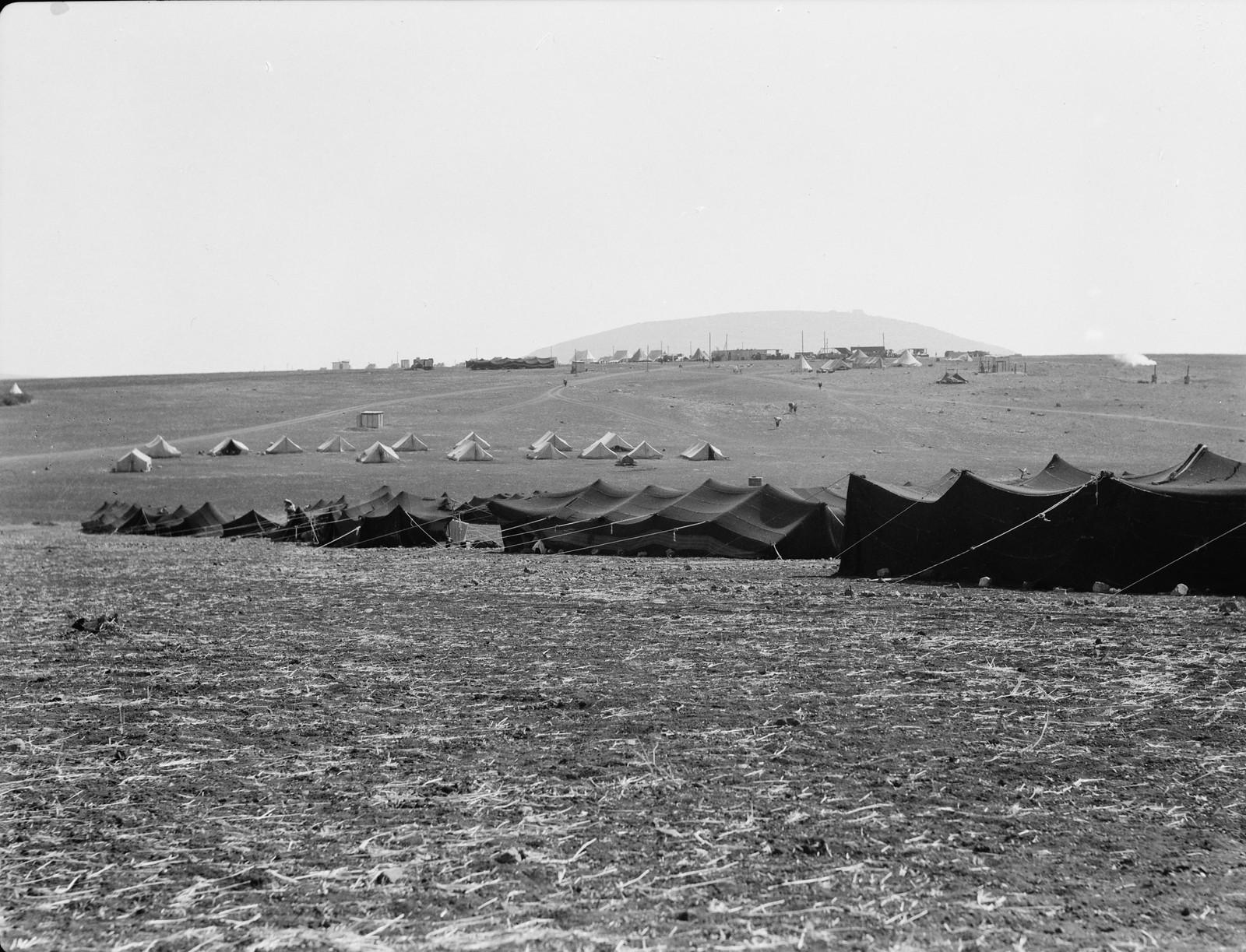 03. Лагерь IPC (Иракская нефтяная компания) возле Фавора с бедуинскими палатками. Арабские рабочие