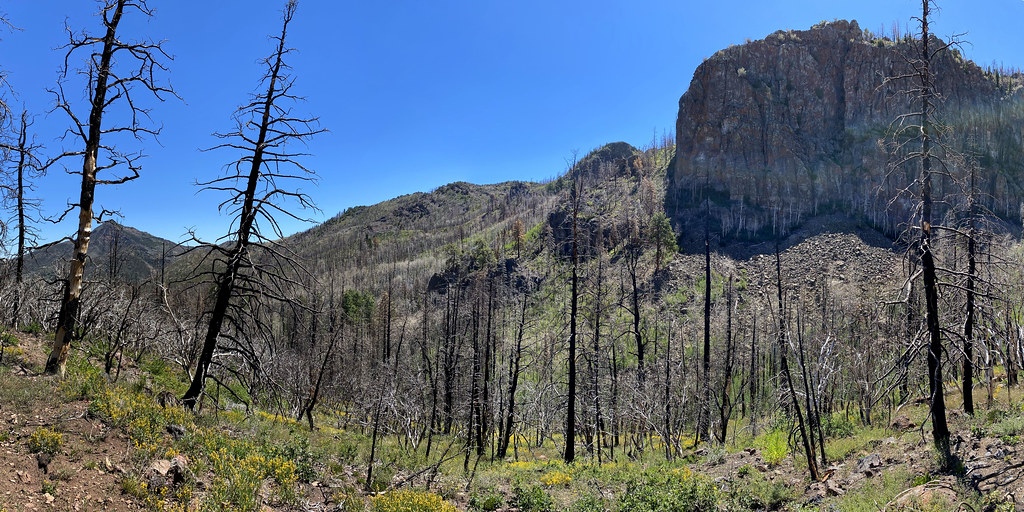 Markagunt Gravity slide in the  Little Creek Peak area, Utah