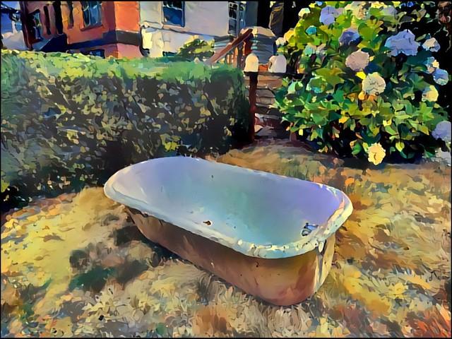 Bathtub in the front yard...