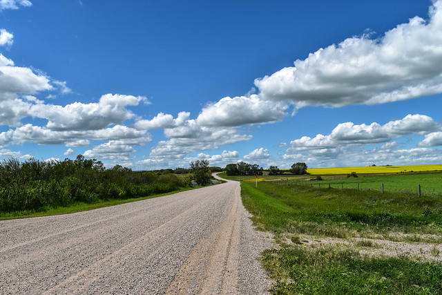 Country road view
