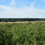 6. August 2020 - 12:33 - Old US military airfield Soesterberg in NL