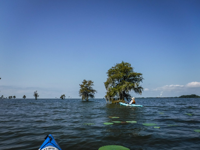 """The Jungle"" on Lake Moultrie with Lowcountry Unfiltered"