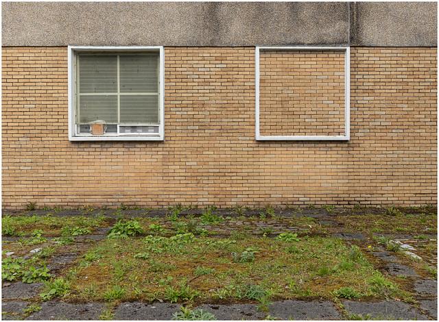 Window - Not Window, Dumbarton