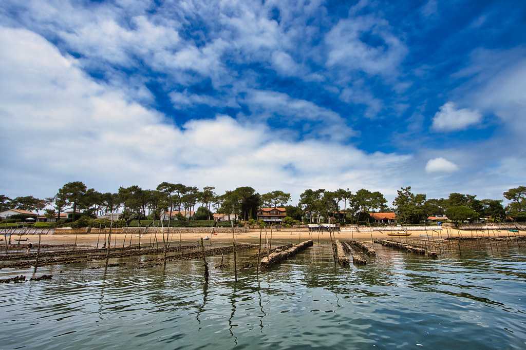Oyster park in the Bassin d'Arcachon
