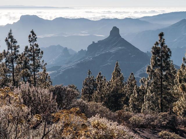 Sendereando... (Gran Canaria)