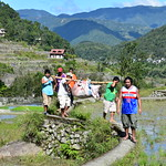 Hungduan, Hapao rice terraces, carrying a pig