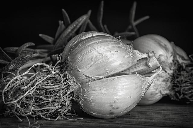 garlic and rosemary fresh from the garden