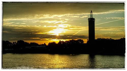 landscape light cologne cgn city landschaft köln street streephotography sommer sun summer sonne sunrise awesome natur nature nice germany deutschland rhein rhine rheinpromenade river