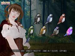 HILTED - Little Bird