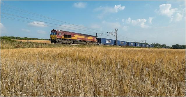66031. Sunday freight ..........