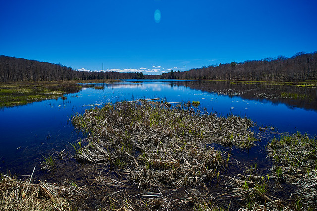 The Stub Lake