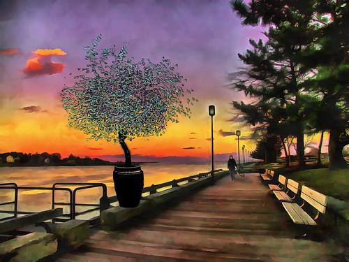 newburyportmassachusetts boardwalk dog late afternoon sky plant colorful day digital flickr country bright happy colour scenic america world sunset red nature blue white tree green art light sun cloud park landscape summer old new photoshop google bing yahoo stumbleupon getty national geographic creative composite manipulation hue pinterest blog twitter comons wiki pixel artistic topaz filter on1 sunshine image reddit tinder russ seidel facebook timber unique unusual fascinating color