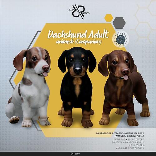 [Rezz Room] Dachshund  Adult Animesh (Companion)