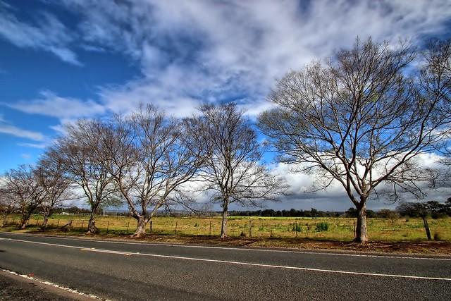 Macquarie Grove Road.