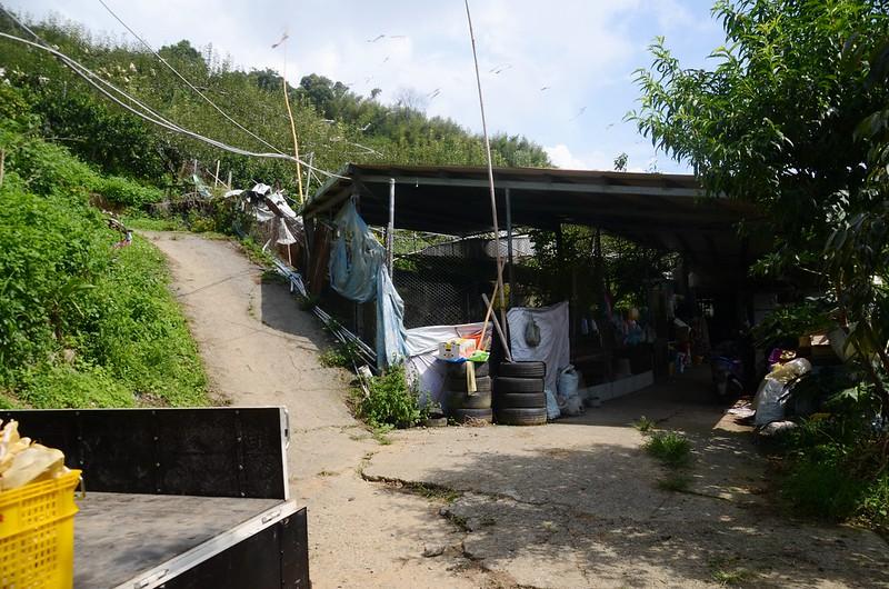 流壁下山果園工寮登山口