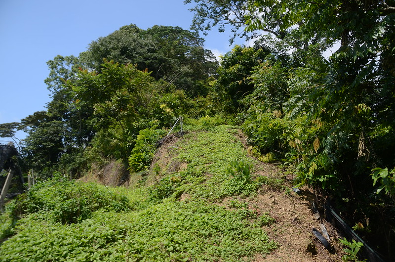 流壁下山果園上緣望基點峰