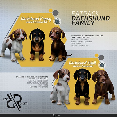 [Rezz Room] Dachshund Puppy Animesh and Adult Animesh (Companion) FATPACK
