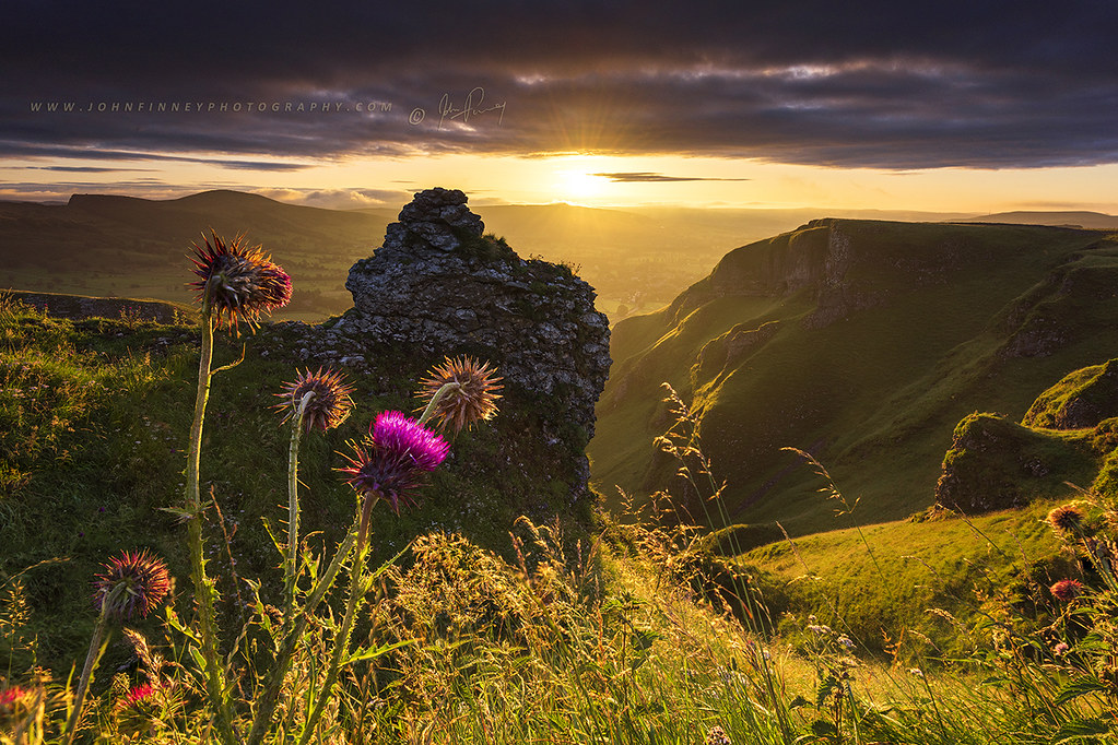 Thistle Sunrise on Winnats Pass