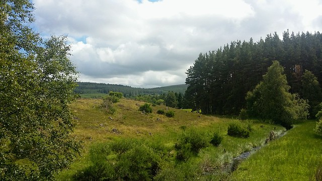 Countryside near Moy, July 2020