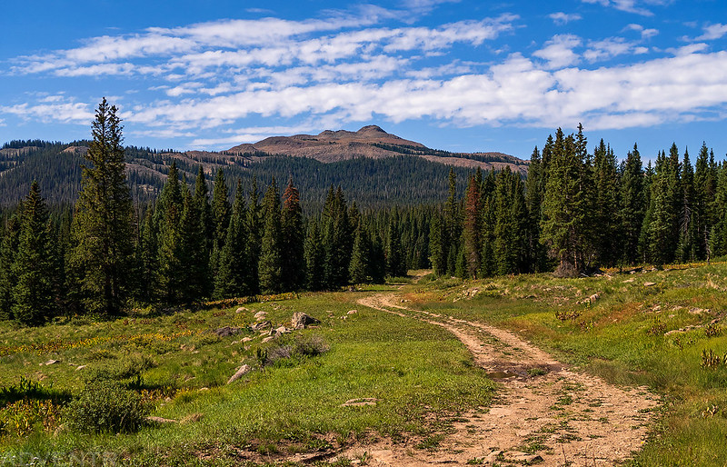 Leaving Groundhog Mountain