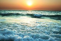 Ocean_Thumb_5111