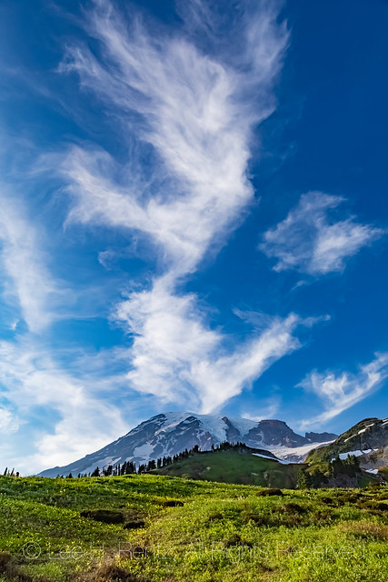 Summer Meadows and Cirrus Clouds with Mount Rainier