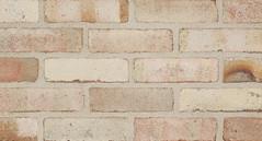 Belcrest 650 Sandmold Texture white Brick