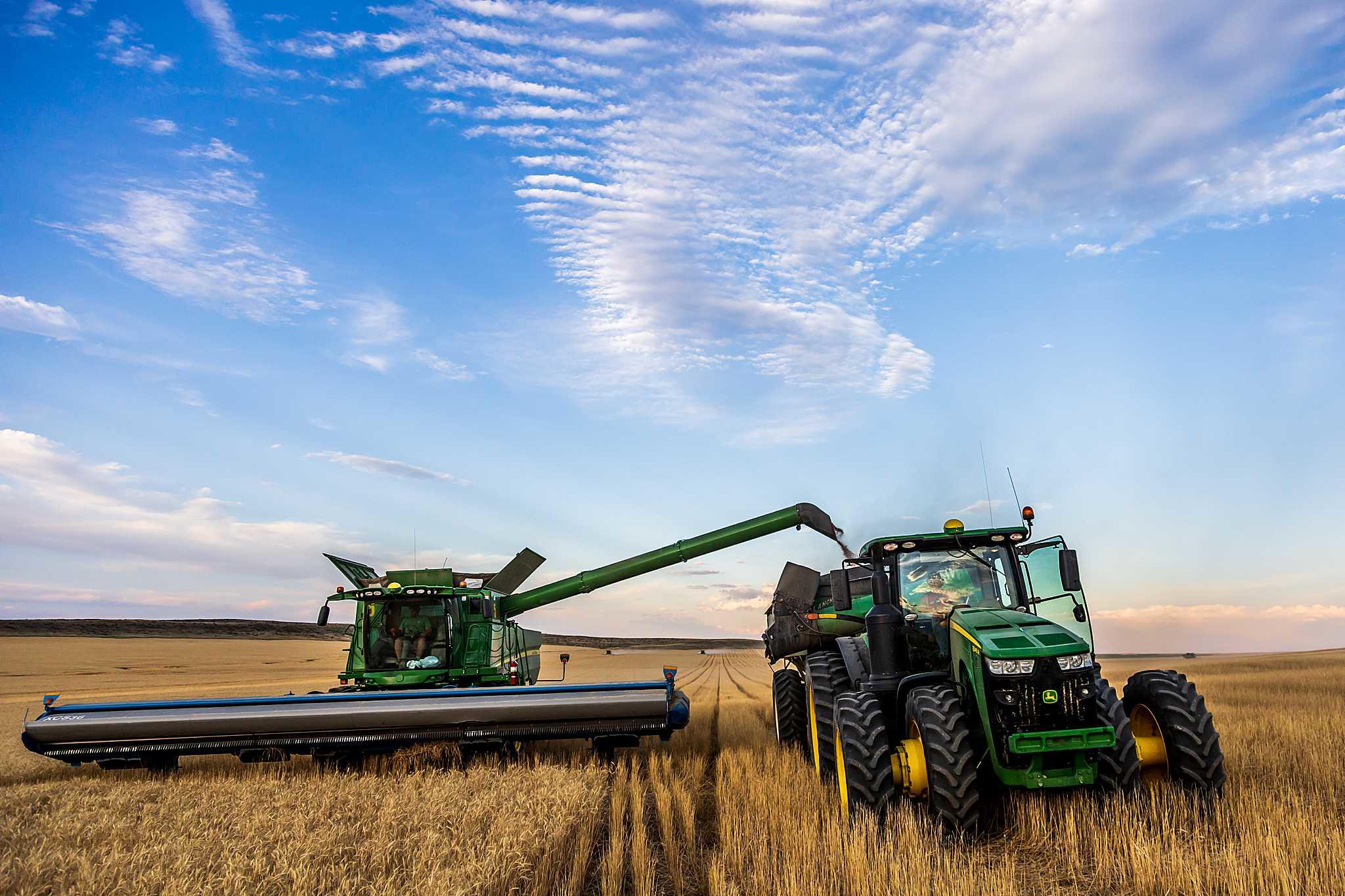 High Plains Harvesting 2020