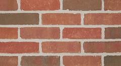Belcrest 560 Sandmold Texture red Brick