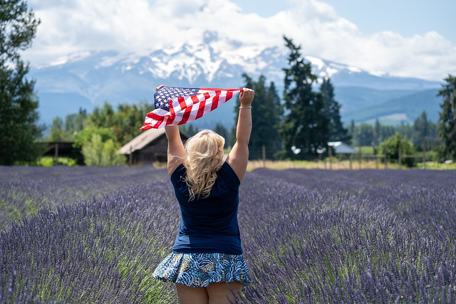 Blonde woman standing in a field of Lavender near Mt. Hood holds an American Fiag as it blows in the wind. Concept for USA, Fourth of July