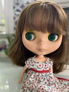 Sarah our in the sunlight today. She had a hair wash, bathe and a new clothes changed and now settled into the book case between Emma and Paige.