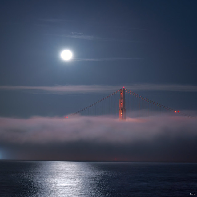 Dancing in the Moonlight