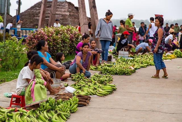 Armchair Traveling - Morning Market on the Amazon River, Peru