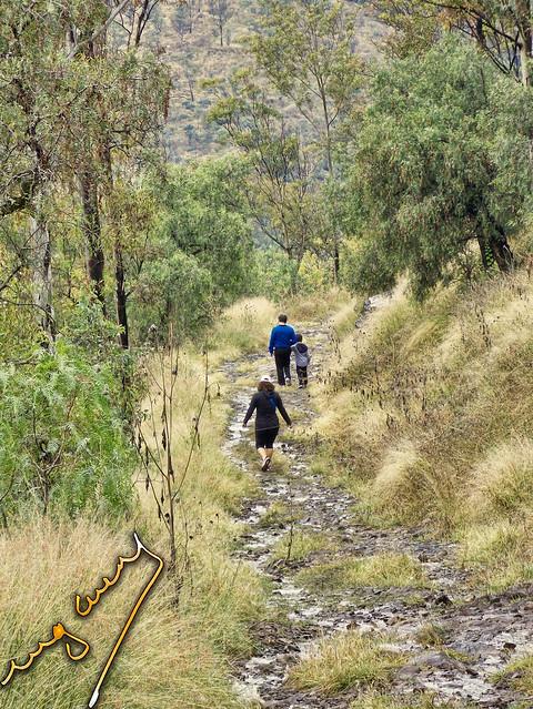 walking in the mount