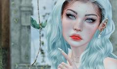 ^^Swallow^^ Ears Contest 2020 - Imogen Atheria