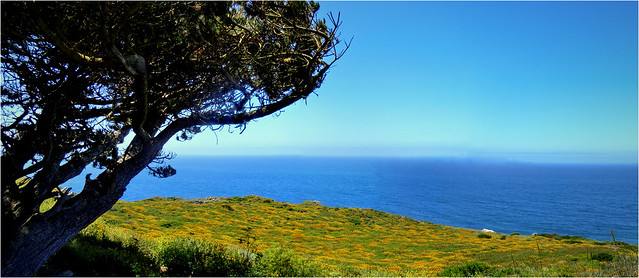 Impressions from Pacific Coast Highway, California - Panorama